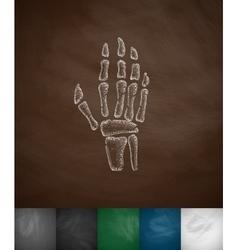 X-ray hand icon vector image