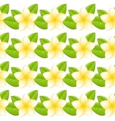 Plumeria seamless pattern vector image
