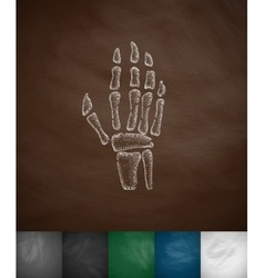 X-ray hand icon vector