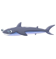 A gray shark vector image