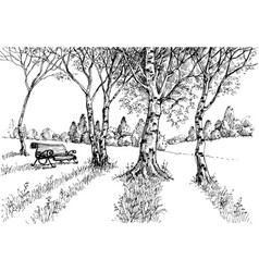 garden in the sunlight drawing a bench in the park vector image vector image