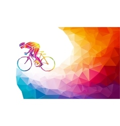 Professional cyclist involved in a bike race vector image