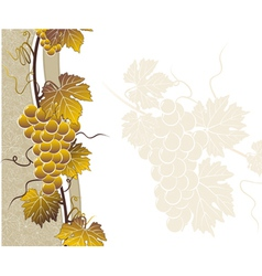 Vine golden frame with templat vector