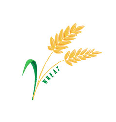 Logo icon design maize corn farm vector