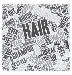 Simple tips for beautiful hair text background vector