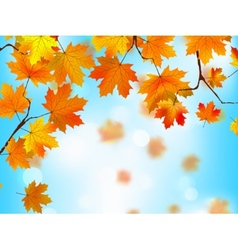Red and yellow leaves against blue skyEPS 8 vector image