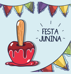 Sweet apple related with the festa junina vector