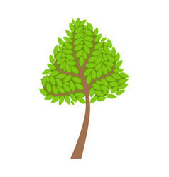 Green tree element of a landscape colorful vector