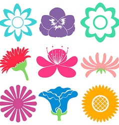 Colourful floral templates vector