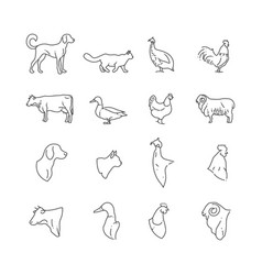 Farm animal and birds thin line icons vector