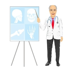 Mature medical male doctor pointing on tomography vector