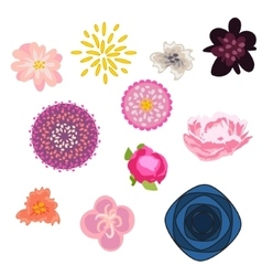 Flower set floral buds kit vector