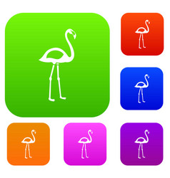 flamingo set color collection vector image vector image