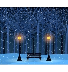 Winter park and outdoor landscape with bench vector