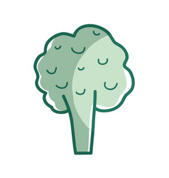 Silhouette health broccoli vegetable icon vector