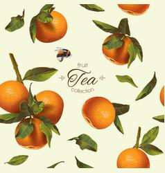 Orange tea pattern vector image