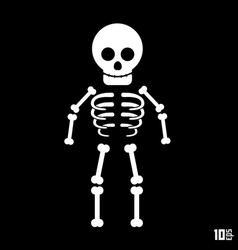 skeleton on a black background vector image vector image