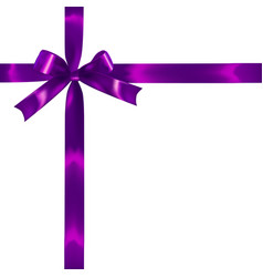 violet realistic bow vector image vector image