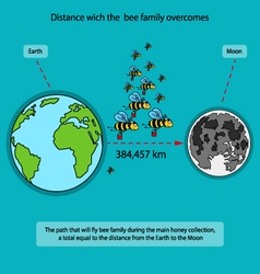 Way which is overcome by a family of bees during vector