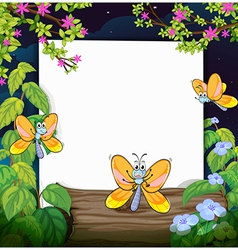 Butterflies and a white board vector image