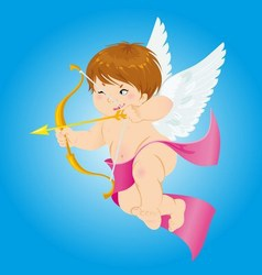 Cupid love of the cupid vector