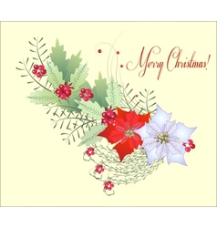 Christmas Branch with Poinsettia vector image vector image
