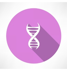 Dna strands icon vector