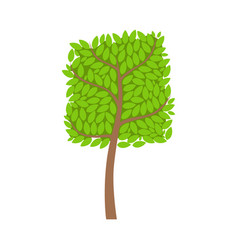 Tree with a square crown and green leaves element vector