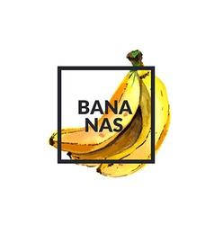 Bananas watercolor vector