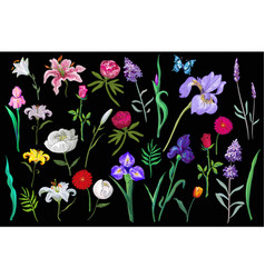 big amazing set of lovely flowers in pastel vector image vector image