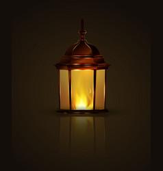air lanterns for diwali vector image