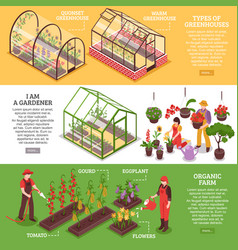 greenhouse banner set vector image
