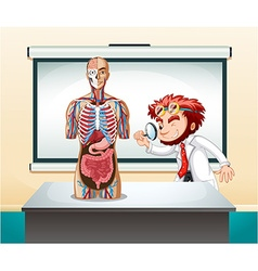 Scientist and human anatomy model vector image vector image