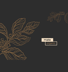 template mate line vector image vector image