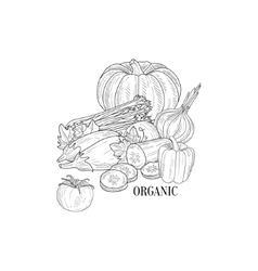 Organic vegetables still life hand drawn realistic vector