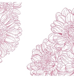 Line drawings pink chrysanthemum vector