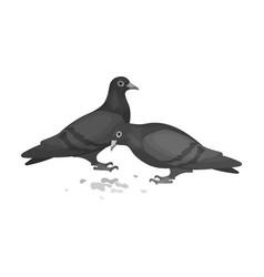 Pigeonold age single icon in monochrome style vector