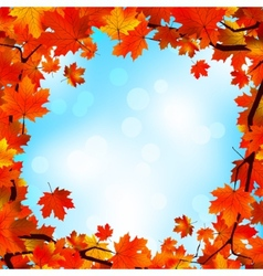 Red and yellow leaves against blue sky EPS 8 vector image vector image