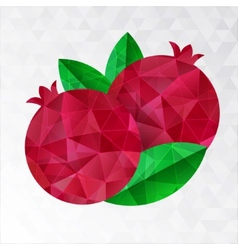 Two pomegranates vector