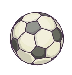 Soccer Ball or football vector image