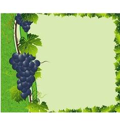 vine green border vector image