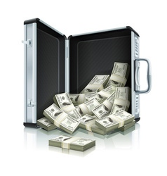 case with dollars vector image vector image