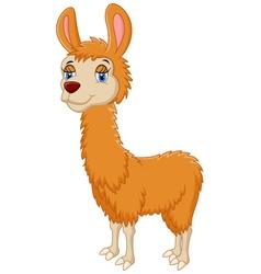 Llama cute cartoon vector
