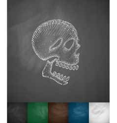 X-rays of the skull icon vector