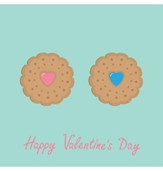 Biscuit cookie cracker couple with pink and blue vector