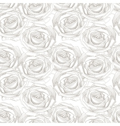 seamless pattern with hand draw sketch rose vector image vector image