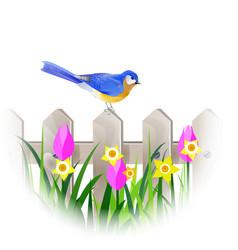 spring blue bird vector image vector image