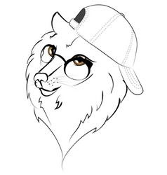wolf in baseball cap vector image vector image
