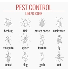 Pest control icon set with names of insects vector