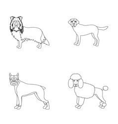 Dog laika beagle and other web icon in outline vector